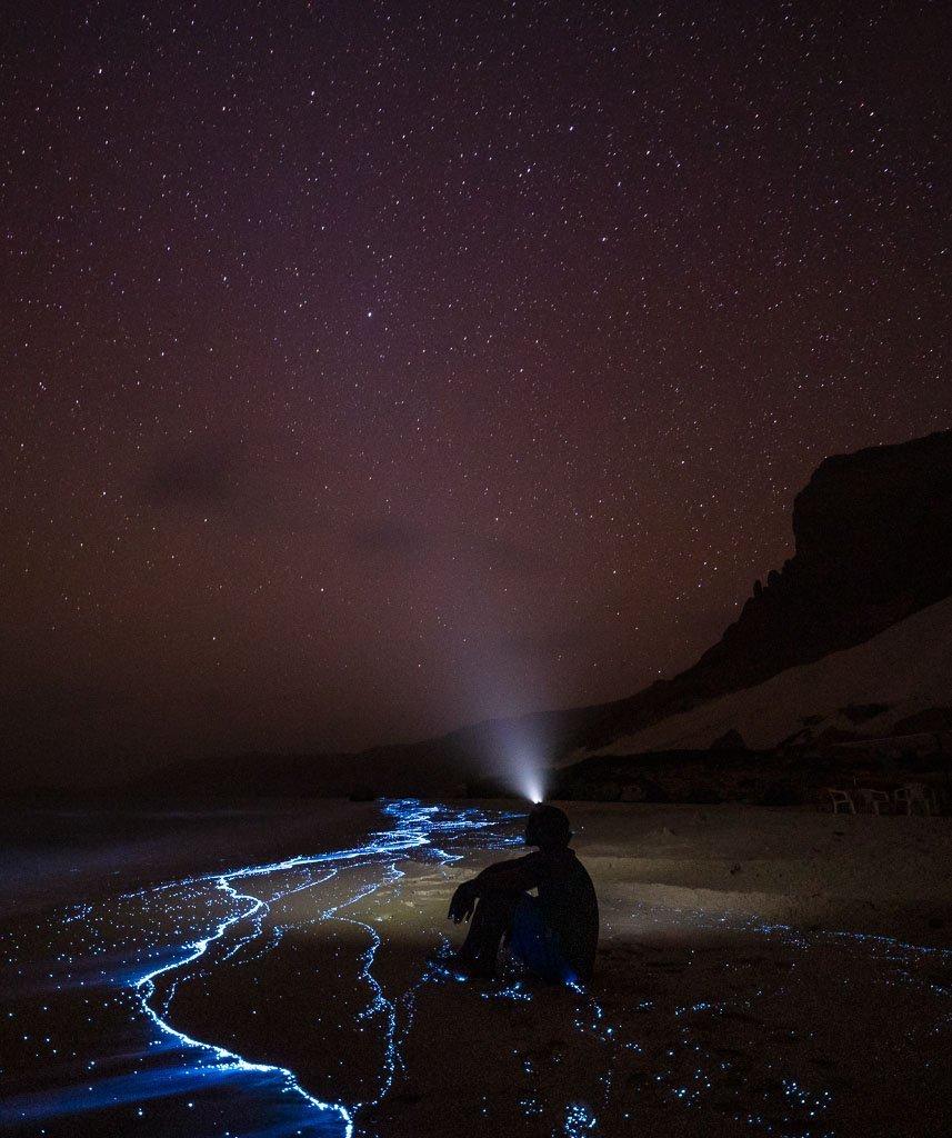 Arher Beach Socotra, Socotra Island, Yemen, Arher, Arher Beach, Socotra bioluminescence, bioluminescence
