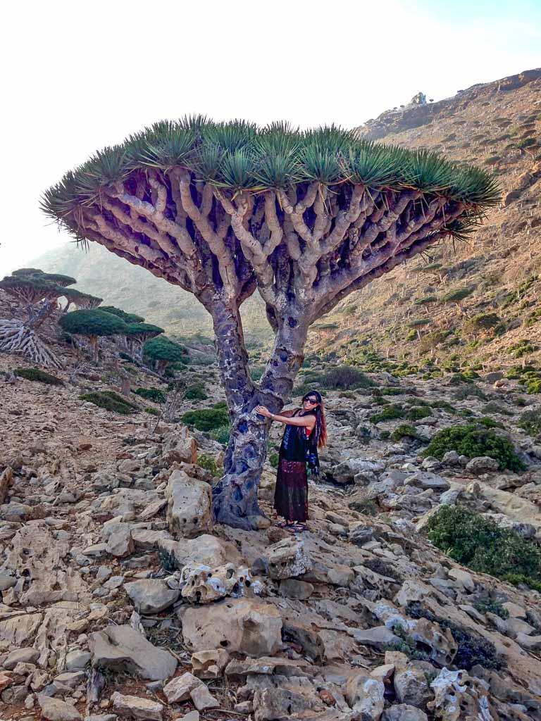 homhil, homhil protected area, Homhil Socotra, travel in Socotra, Socotra, Socotra Island, Yemen, Socotra Yemen, Socotra Island Yemen, Yemen Island, Yemen islands, Socotra Archipelago, Yemen, dragon blood tree, dragon blood trees, woman dragon blood tree, women socotra, Socotra women