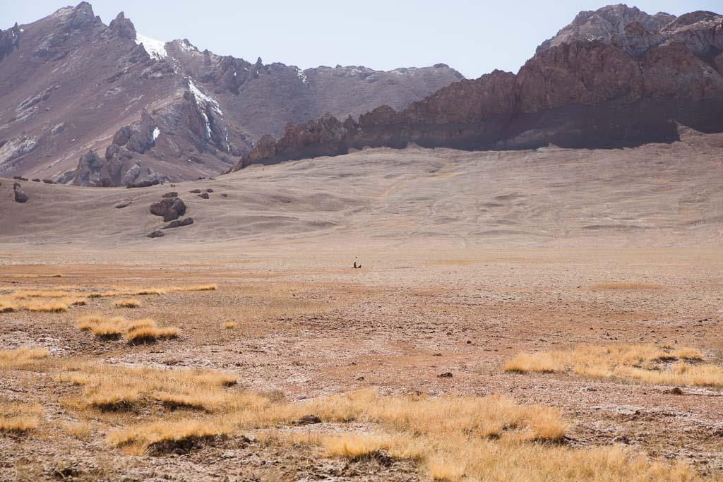 Jarty Gumbez, Eastern Pamir, Pamir, Pamirs, Pamir Mountians, Tajikistan, GBAO