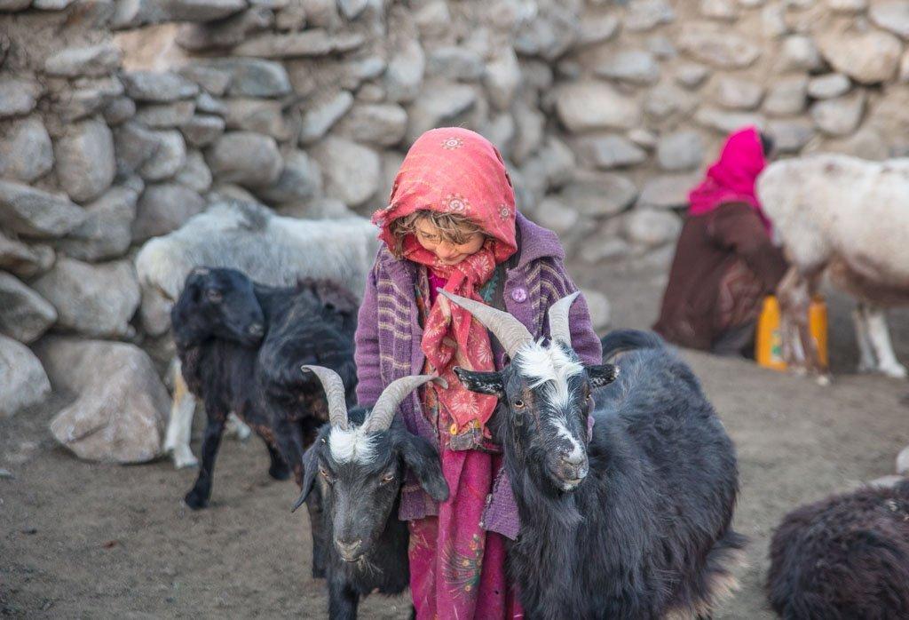 Wakhan photos, photos Wakhan, Maydon, Maydon Afghanistan, Afghan girl with goats, Wakhi girl goats, Afghanistan, Great Pamir, Great Pamir Afghanistan, Wakhan, Wakhan Valley, Wakhan Afghanistan, Wakhan Corridor