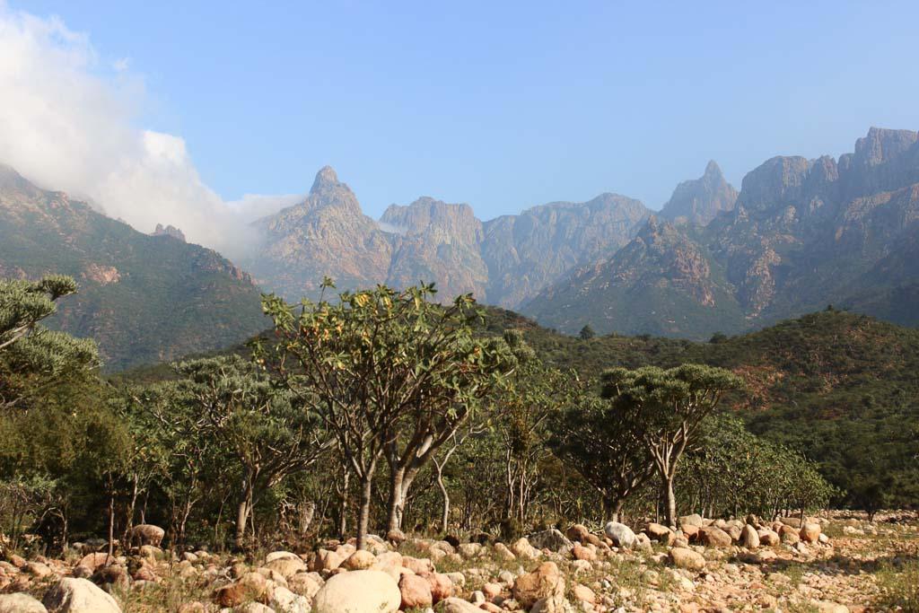 10 days socotra, travel in socotra, Socotra, Socotra Island, Yemen, Socotra Yemen, Socotra Island Yemen, Yemen Island, Yemen islands, Socotra Archipelago, Haggier Mountains, Haggier Socotra, Socotra Mountaints