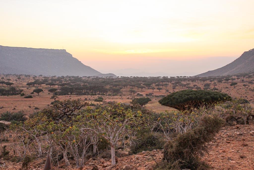 travel in Socotra, Socotra, Socotra Island, Yemen, Socotra Yemen, Socotra Island Yemen, Yemen Island, Yemen islands, Socotra Archipelago, Yemen, homhil, homhil protected area, homhil socotra, homhil sunset