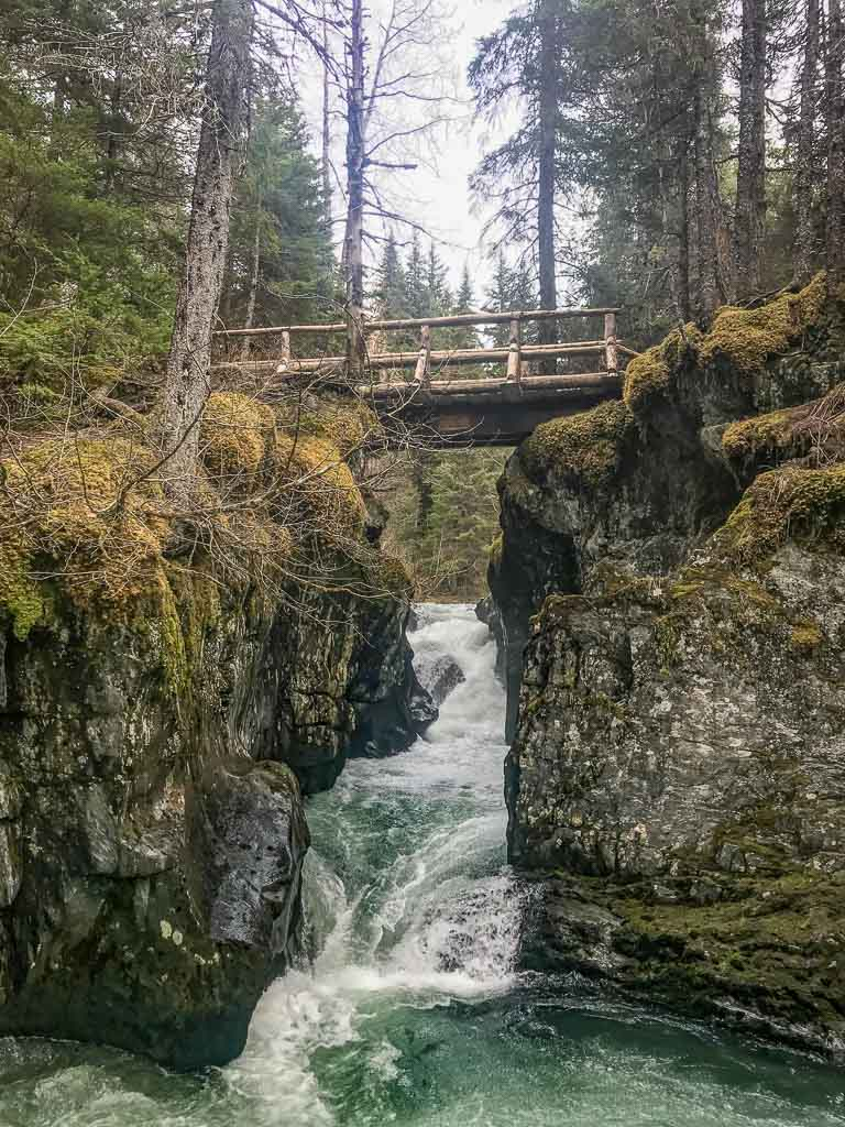 Lower Winner Creek, Winner Creek, Girdwood, Alaska, Anchorage day hikes