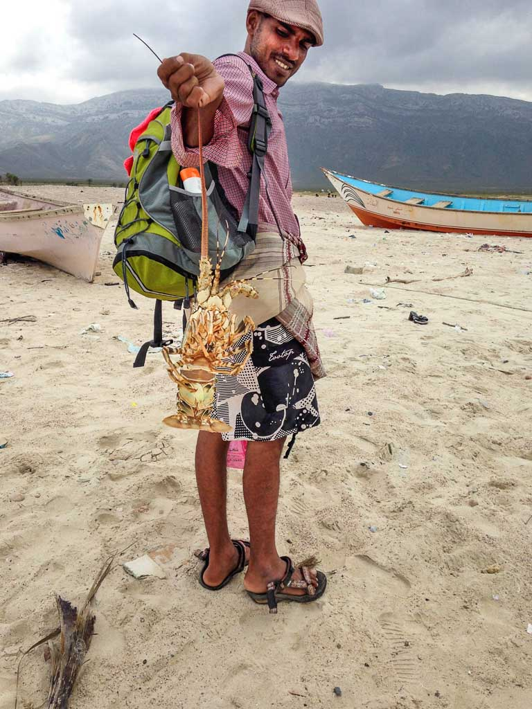 10 days socotra, travel to Socotra, travel in Socotra, Socotra, Socotra Island, Yemen, Socotra Yemen, Socotra Island Yemen, Yemen Island, Yemen islands, Socotra Archipelago, Yemen, Socotri, Socotri man, Qalansiya, Qalansiya socotra, Qalansiya yemen, Qalasiya lobster, Socotra lobster, lobster