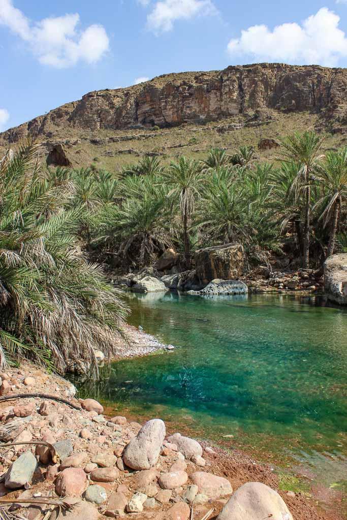 oasis, Socotra oasis, travel in Socotra, Socotra, Socotra Island, Yemen, Socotra Yemen, Socotra Island Yemen, Yemen Island, Yemen islands, Socotra Archipelago, Yemen