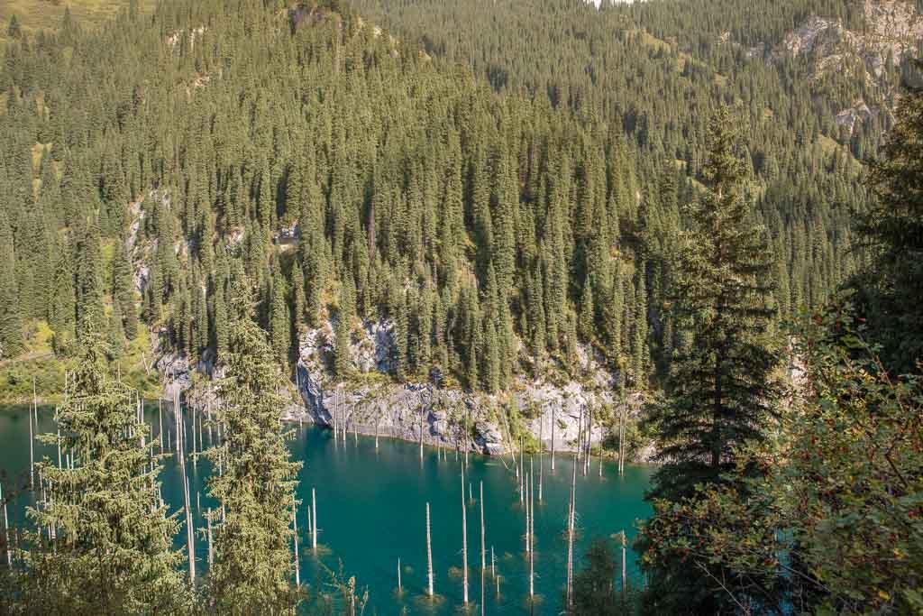 Kaindy Lake, Kazakhstan, Sunken Forest, Sunken Forest Kaindy Lake, Sunken Forest Kazakhstan, Lake Kaindy, Kaindy
