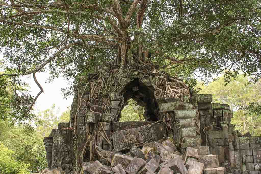Beng Mealea, Cambodia, Angkor, Angkor Complex