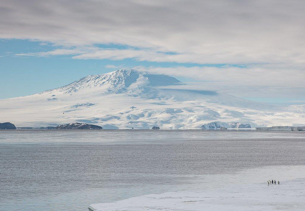 Mt. Erebus, Erebus, Antarctica, Ross Sea, McMurdo Sound, Emperor Penguins