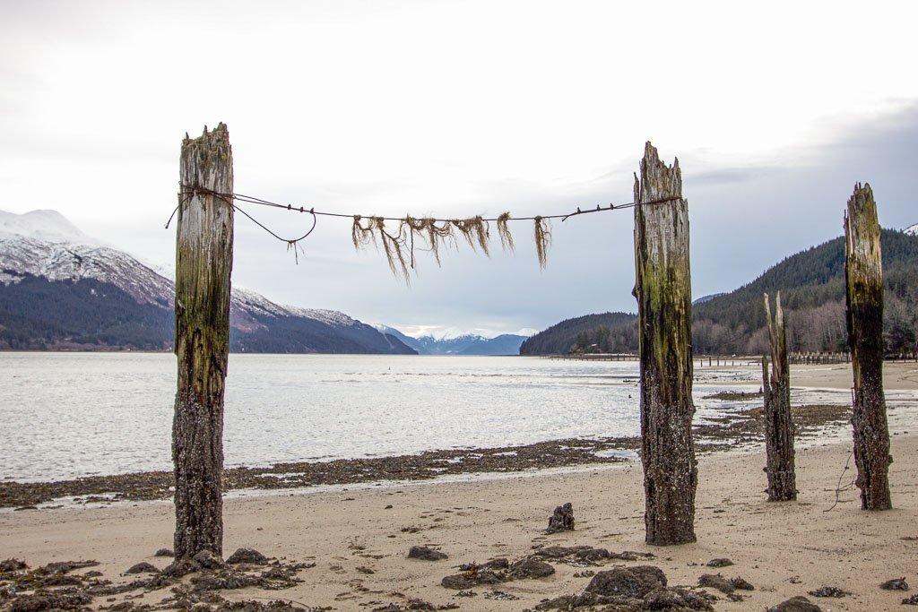 Savikko Beach, Juneau, Sandy Beach, Sandy Beach Juneau, Alaska, southeast Alaska, USA