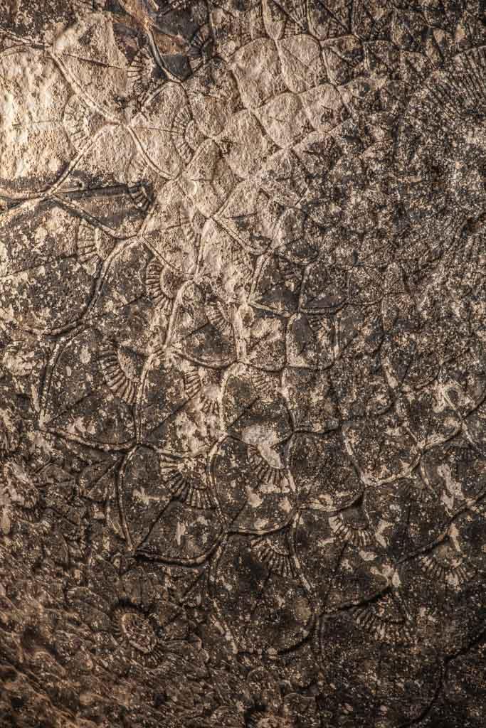 Takht e Rustam, Samangan, Afghanistan, Northern Afghanistan, Takht e Rustam Buddhist Cave, Takht e Rustam Buddhist Cave Ceiling