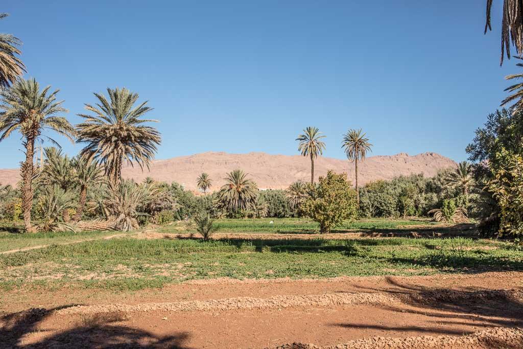 Tinghir, Tinghir Morocco, Morocco, Morocco oasis