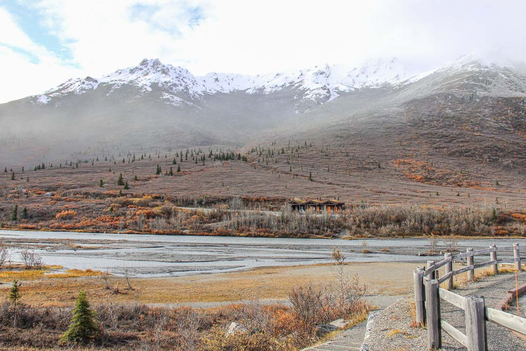 Denali Road Lottery, Denali National Park, Alaska, Savage River