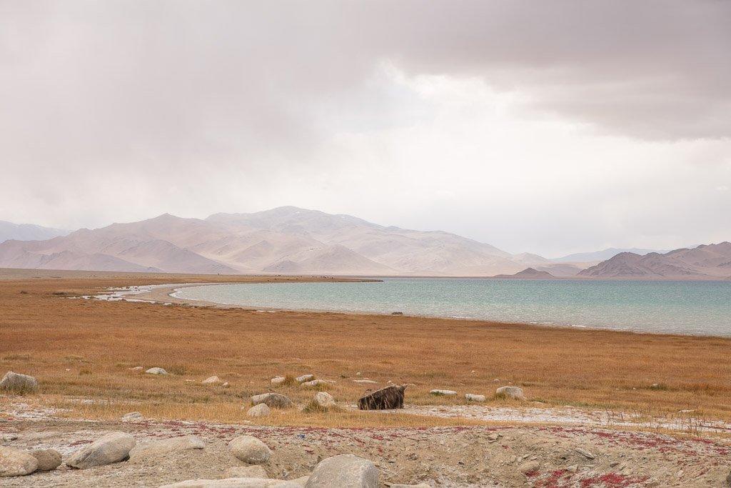 Karakul, Karakul Tajikistan, Pamir