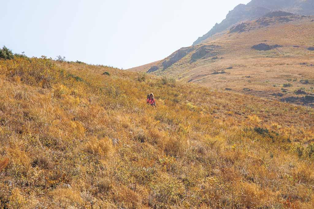 Gding, Gding Plateau, Pulisangin, Pulisangin Valley, Gardan i Kaftar, Rasht Valley, Karotegin, Karotegin Valley, Badakshan, GBAO, Tajikistan, Central Asia