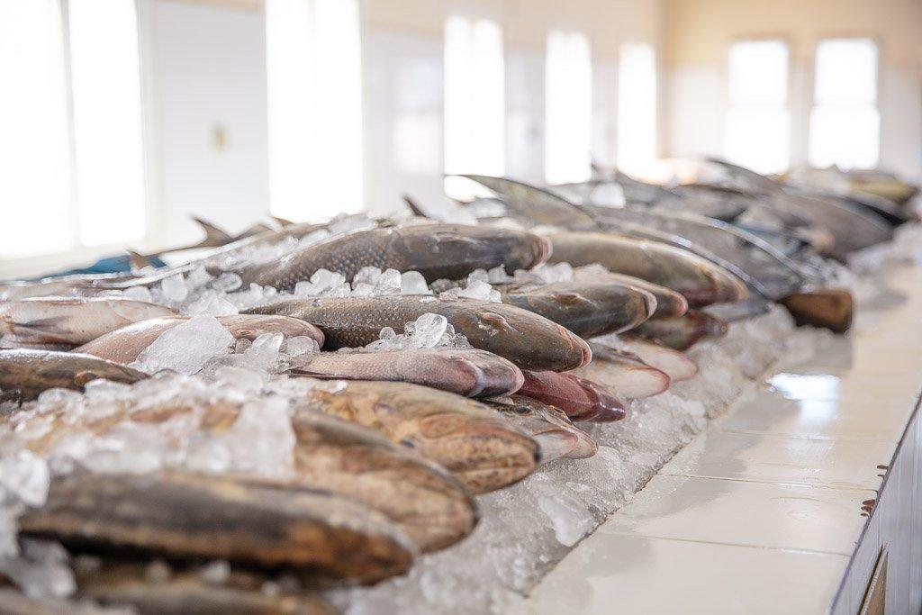 Mirbat Fish Market, Fish Market, Mirbat, Dhofar, Oman