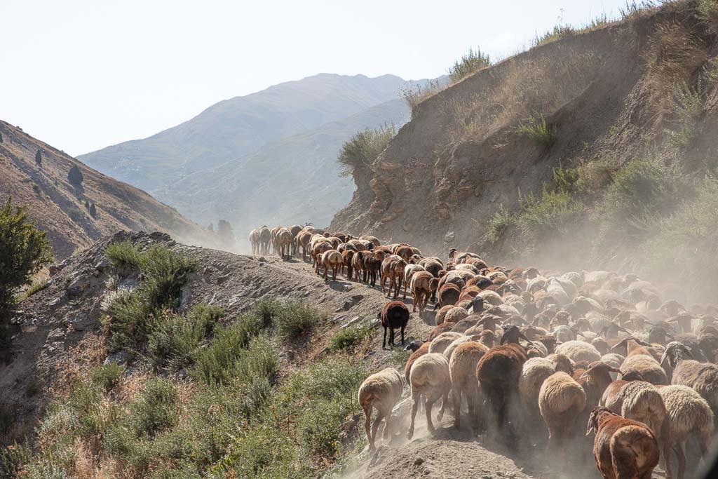 Yagnob, Yaghnob, Yagnob Valley, Tajikistan, Sughd, Central Asia