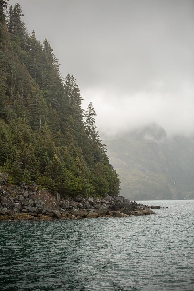 gulf of Alaska, Alaska, resurrection bay, kenai fjords, kenai Fjords national park, major marine tours