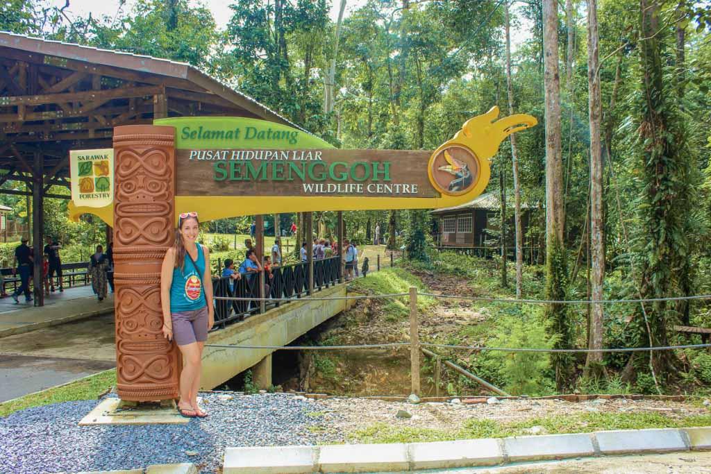 Semenggoh Wildlife Center, Semenggoh, orangutan, borneo, sarawak, malaysia