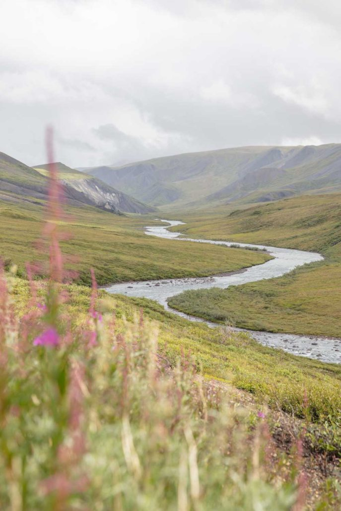 Atigun Gorge, Arctic National Wildlife Refuge , Alaska, ANWR, Alaskan Arctic, Arctic, Northern Alaska, Atigun, Atigun River